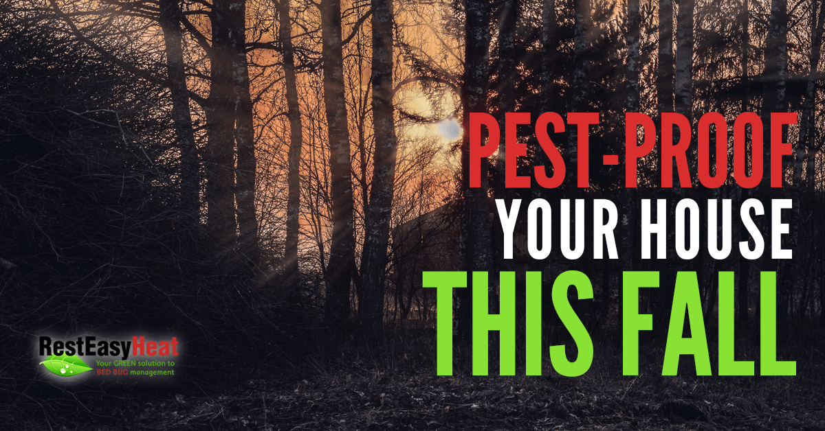 Pest-Proof Your House This Fall